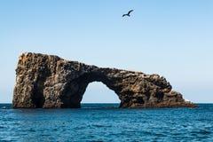 Ponte natural da rocha do arco na ilha de Anacapa em Califórnia foto de stock