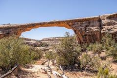 Ponte natural do arenito imagem de stock royalty free