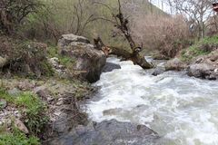 Ponte naturale sopra il fiume della montagna fotografie stock