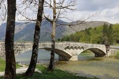 Ponte nel lago Bohinj Fotografia Stock