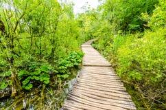 Ponte nel legno Immagini Stock Libere da Diritti