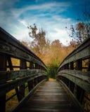 Ponte nel legno Immagine Stock Libera da Diritti