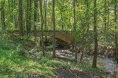 Ponte nel legno Fotografie Stock