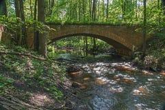 Ponte nel legno Fotografia Stock