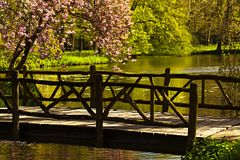 Ponte nel parco Fotografia Stock