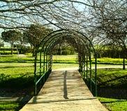 Ponte nel parco Immagine Stock