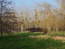 Ponte nel parco Fotografia Stock Libera da Diritti