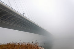 Ponte nella nebbia Fotografie Stock