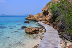 Ponte nella spiaggia Immagine Stock