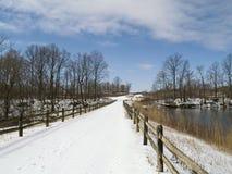 Ponte nevado Imagem de Stock Royalty Free