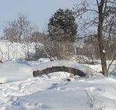 Ponte nevado Fotos de Stock Royalty Free