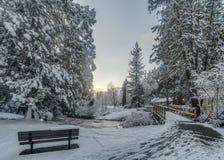 Ponte nevado Imagens de Stock