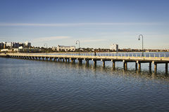Ponte no mar Foto de Stock Royalty Free