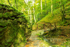 Ponte no outono Fotografia de Stock Royalty Free