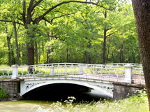 Ponte no parque de Pavlovsk Fotos de Stock