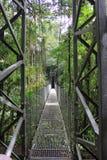 Ponte pedestre Fotos de Stock Royalty Free