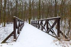 Ponte pedonale nell'inverno fotografia stock libera da diritti