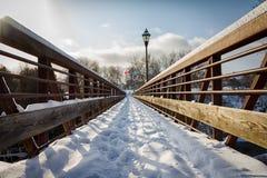 Ponte pedonale nell'inverno Fotografie Stock Libere da Diritti