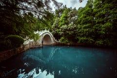Ponte pedonale sopra un lago nei precedenti degli alberi spessi Fotografie Stock