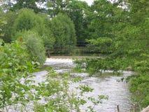 A ponte pequena no rio Imagens de Stock