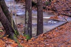 Ponte pequena sobre a angra em Bruce Trail fotografia de stock royalty free