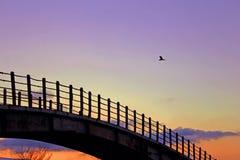 Ponte per la gente dell'amante Fotografia Stock