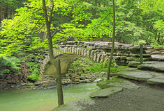 Ponte pietroso in PS pietroso del ruscello Immagini Stock