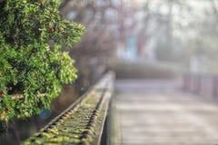 Ponte placcato acciaio con il chiarore del sole ai precedenti Fotografia Stock Libera da Diritti