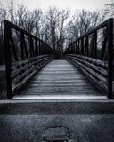 Ponte preto e branco Imagem de Stock