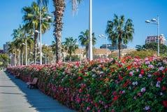 Ponte Puente de Las Flores, un ponte moderno dei fiori con un'abbondanza dei vasi da fiori in pieno dei fiori Fotografie Stock