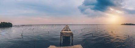 A ponte quebrada estende ao mar nos manguezais em Tailândia fotos de stock royalty free
