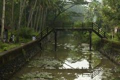 Ponte quebrada sobre o canal com palmeiras fotografia de stock royalty free