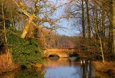 Ponte rústica com água Imagem de Stock Royalty Free