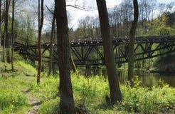 A ponte railway destruída sobre o rio Foto de Stock Royalty Free