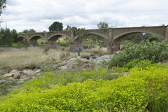Ponte Railway em desuso velha, Palmer, Sul da Austrália Imagem de Stock Royalty Free