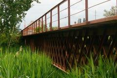 Ponte Railway sobre o rio coberto de vegetação Foto de Stock Royalty Free