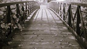 Ponte Separação-tonificada decorativa imagem de stock