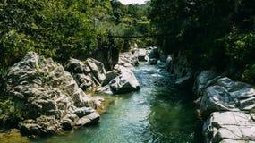 Ponte sob o rio Trajeto em torno das árvores imagens de stock