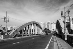 Ponte sobre avenidas do problema Imagem de Stock Royalty Free