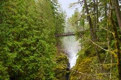 Ponte sobre cachoeiras do rio do inglês na ilha de Vancôver, BC Fotos de Stock