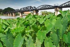 Ponte sobre o rio Kwai. Fotos de Stock