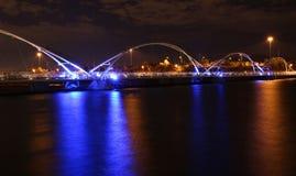 Ponte sobre Rio Salado River Foto de Stock Royalty Free