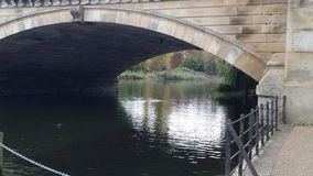 Ponte sobre a serpentina Imagem de Stock Royalty Free