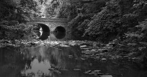Ponte sobre um rio em um parque preto e branco Imagens de Stock Royalty Free