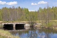 Ponte sobre uma floresta pequena do rio feita dos canais do concreto reforçado fotografia de stock
