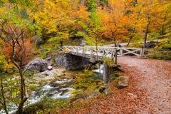 Ponte sopra il fiume di Arazas sull'autunno al parco nazionale di Ordesa Fotografia Stock