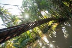 Ponte sopra il Mekong Fotografia Stock Libera da Diritti