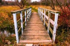 Ponte sopra la corrente della zona umida in autunno Fotografie Stock
