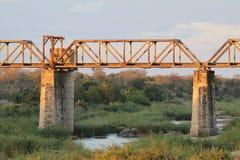 Ponte sopra Sabie River Immagini Stock Libere da Diritti
