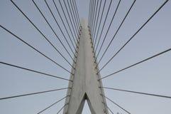 Ponte sospeso Amsterdam Immagini Stock